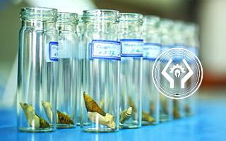 20 درصد تخفیف خدمات آزمایشگاهی